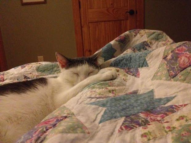 sleeping-hillary